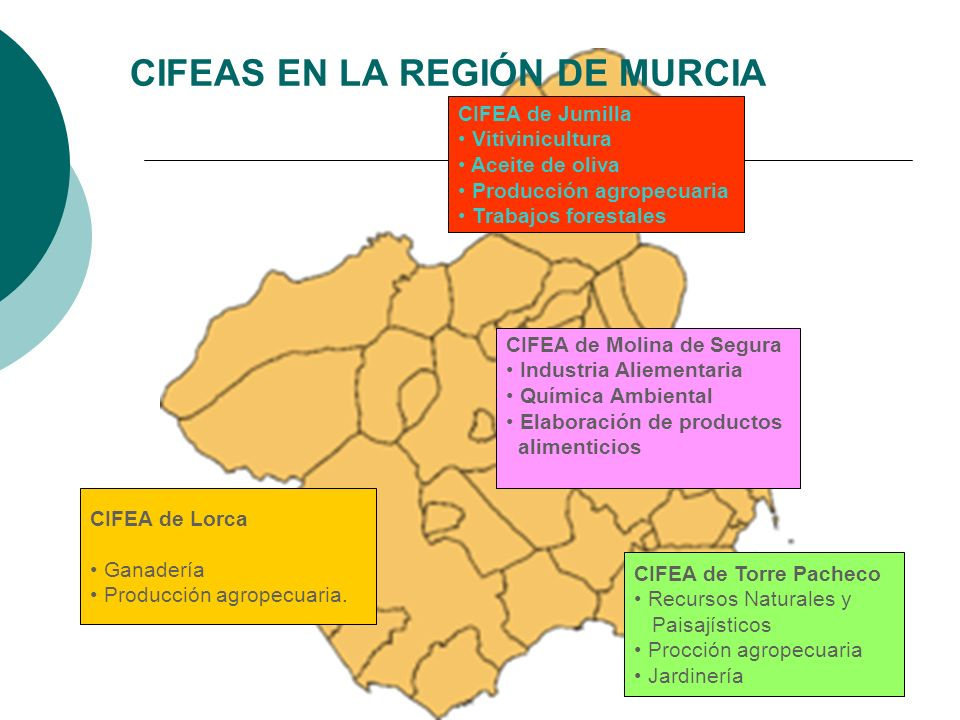 CIFEAS EN LA REGIÓN DE MURCIA CIFEA de Torre Pacheco Recursos Naturales y Paisajísticos Procción agropecuaria Jardinería CIFEA de Jumilla Vitivinicult
