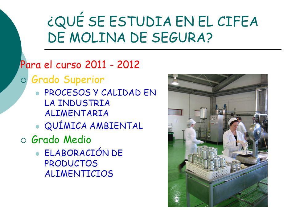 ¿QUÉ SE ESTUDIA EN EL CIFEA DE MOLINA DE SEGURA? Para el curso 2011 - 2012 Grado Superior PROCESOS Y CALIDAD EN LA INDUSTRIA ALIMENTARIA QUÍMICA AMBIE