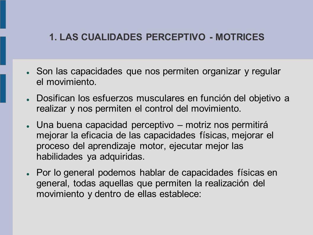 1. LAS CUALIDADES PERCEPTIVO - MOTRICES Son las capacidades que nos permiten organizar y regular el movimiento. Dosifican los esfuerzos musculares en