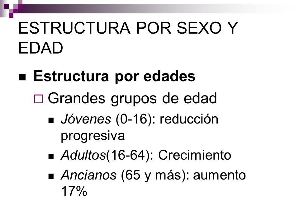 ESTRUCTURA POR SEXO Y EDAD Estructura por edades Grandes grupos de edad Jóvenes (0-16): reducción progresiva Adultos(16-64): Crecimiento Ancianos (65