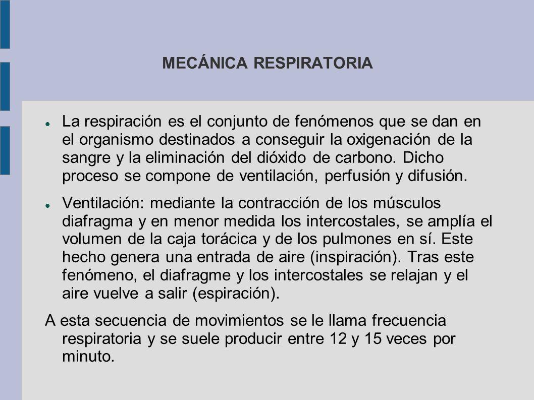 MECÁNICA RESPIRATORIA La respiración es el conjunto de fenómenos que se dan en el organismo destinados a conseguir la oxigenación de la sangre y la el