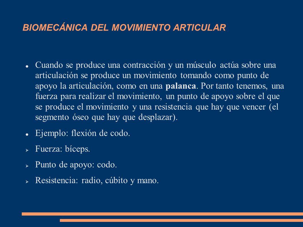 BIOMECÁNICA DEL MOVIMIENTO ARTICULAR Cuando se produce una contracción y un músculo actúa sobre una articulación se produce un movimiento tomando como