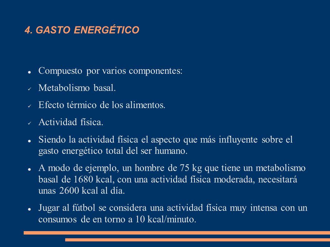 4. GASTO ENERGÉTICO Compuesto por varios componentes: Metabolismo basal. Efecto térmico de los alimentos. Actividad física. Siendo la actividad física