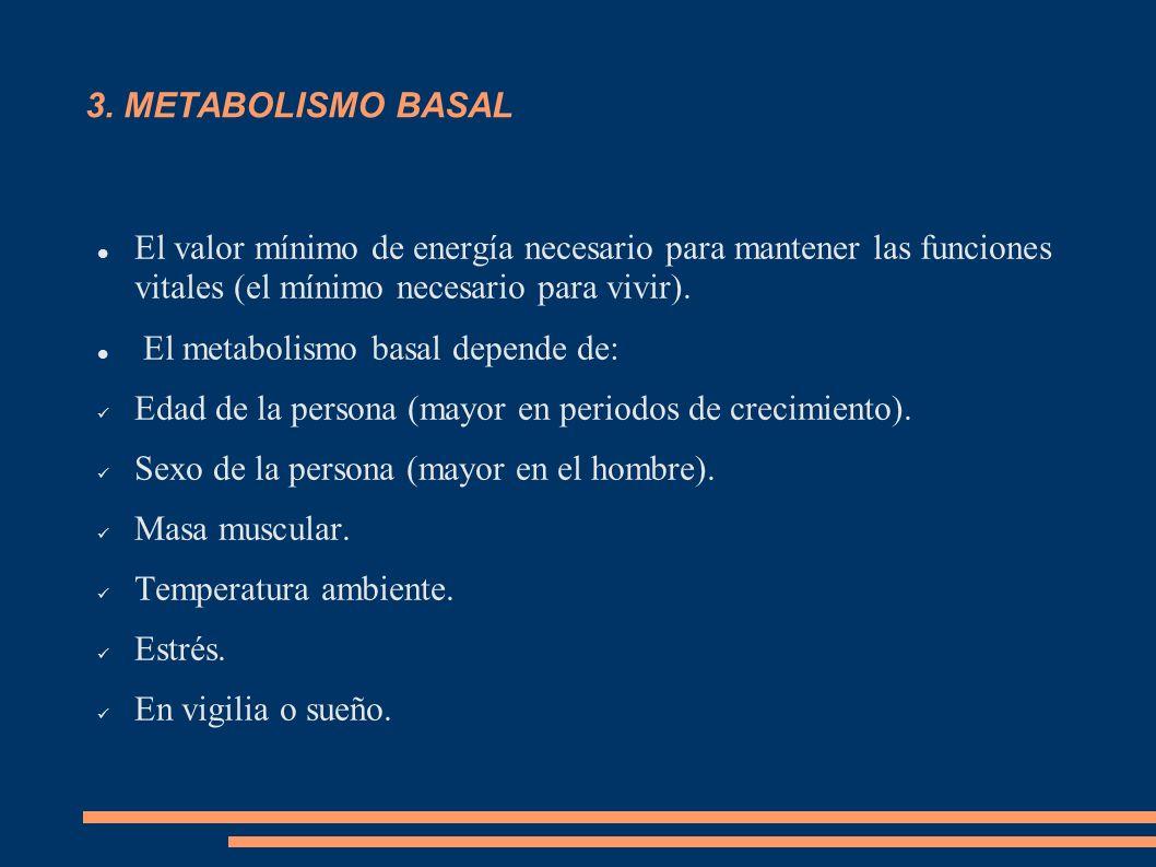 3. METABOLISMO BASAL El valor mínimo de energía necesario para mantener las funciones vitales (el mínimo necesario para vivir). El metabolismo basal d