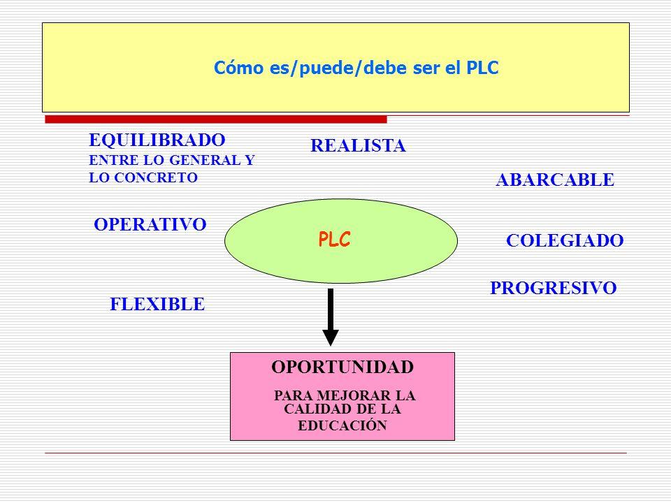 Cómo es/puede/debe ser el PLC PLC EQUILIBRADO ENTRE LO GENERAL Y LO CONCRETO FLEXIBLE PROGRESIVO COLEGIADO ABARCABLE REALISTA OPERATIVO OPORTUNIDAD PA