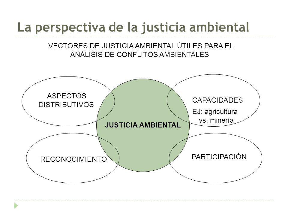 La perspectiva de la justicia ambiental JUSTICIA AMBIENTAL ASPECTOS DISTRIBUTIVOS RECONOCIMIENTO PARTICIPACIÓN CAPACIDADES VECTORES DE JUSTICIA AMBIENTAL ÚTILES PARA EL ANÁLISIS DE CONFLITOS AMBIENTALES EJ: agricultura vs.
