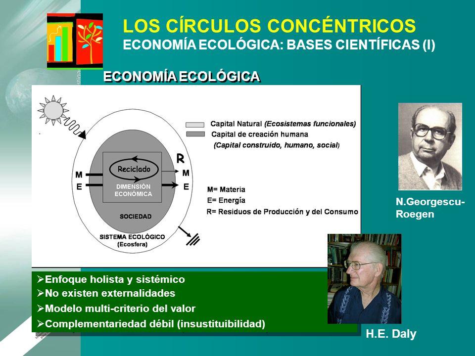 Enfoque holista y sistémico No existen externalidades Modelo multi-criterio del valor Complementariedad débil (insustituibilidad) Enfoque holista y si