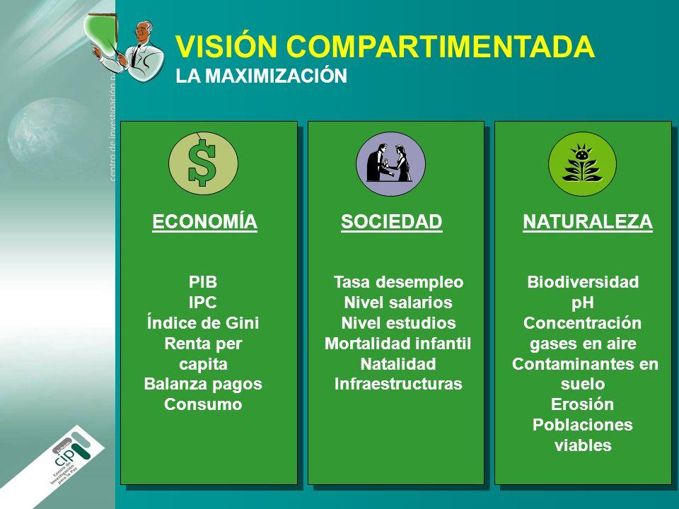 SOCIEDAD ECONOMÍA NATURALEZA VISIÓN COMPARTIMENTADA LA MAXIMIZACIÓN PIB IPC Índice de Gini Renta per capita Balanza pagos Consumo Tasa desempleo Nivel