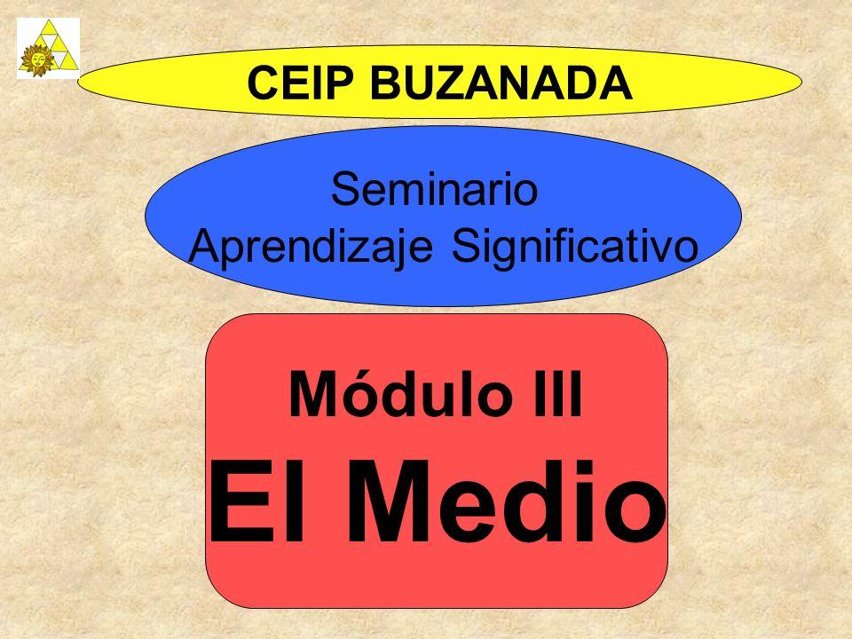 Módulo III El Medio CEIP BUZANADA Seminario Aprendizaje Significativo