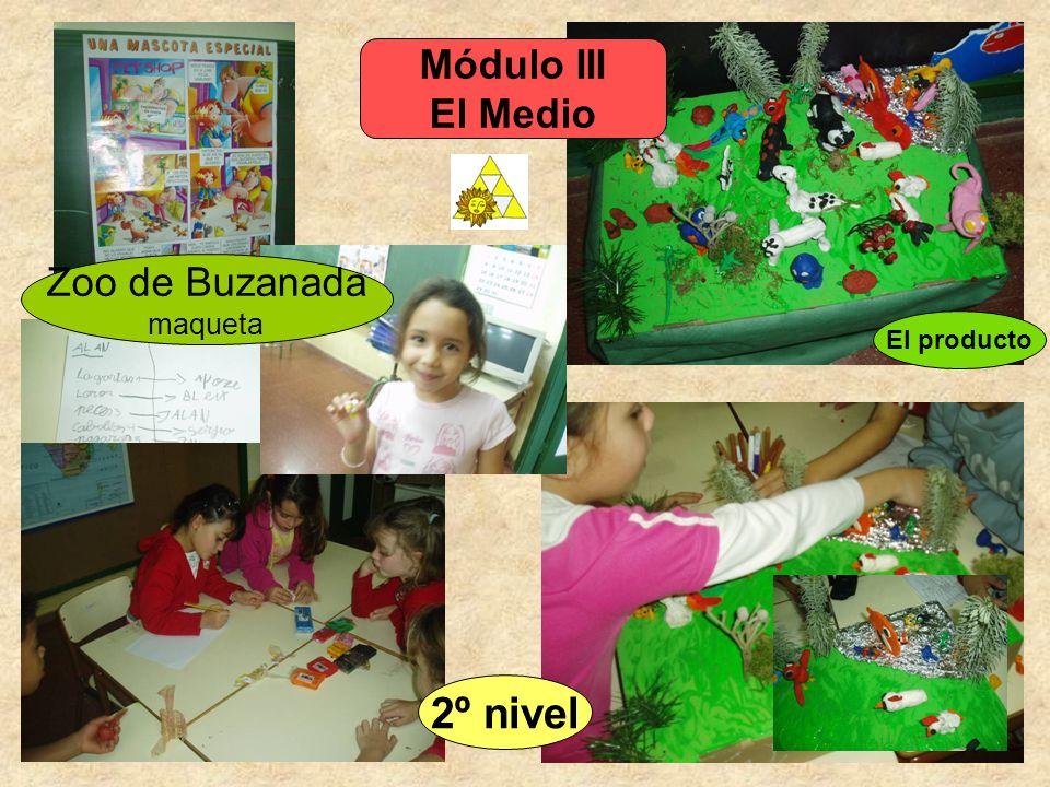 Módulo III El Medio El producto Zoo de Buzanada maqueta 2º nivel