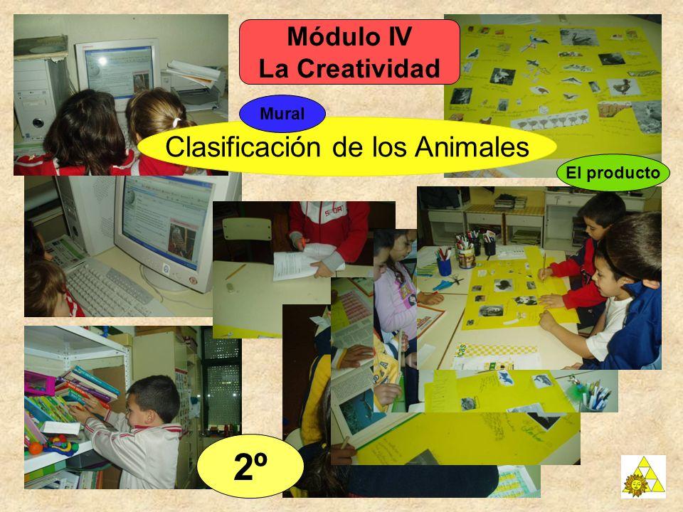 Clasificación de los Animales 2º El producto Módulo IV La Creatividad Mural