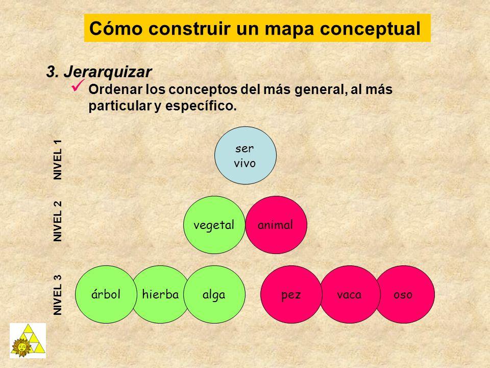 Cómo construir un mapa conceptual 3. Jerarquizar Ordenar los conceptos del más general, al más particular y específico. osovaca animal hierbapez ser v