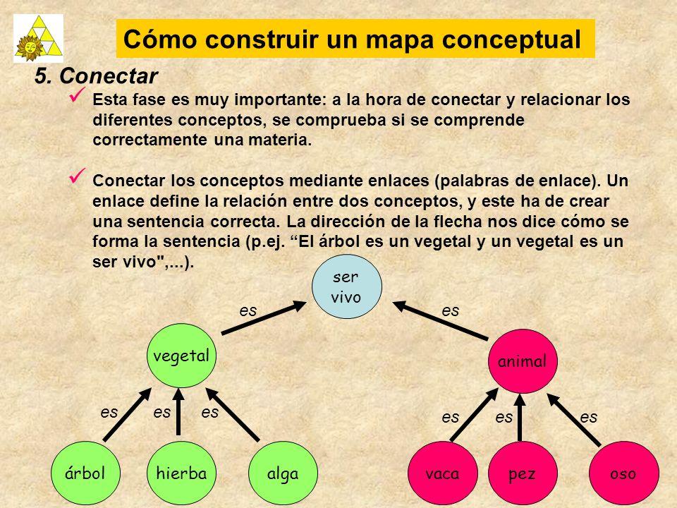 Cómo construir un mapa conceptual 5. Conectar Esta fase es muy importante: a la hora de conectar y relacionar los diferentes conceptos, se comprueba s