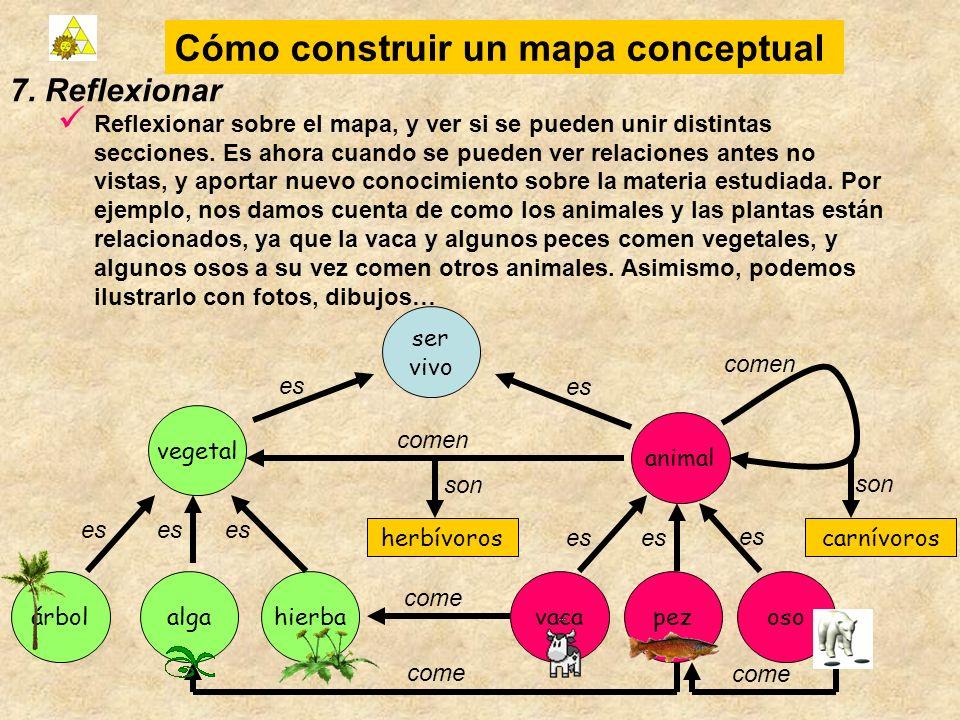 Cómo construir un mapa conceptual osovaca animal hierbapez ser vivo árbolalga vegetal es 7. Reflexionar Reflexionar sobre el mapa, y ver si se pueden