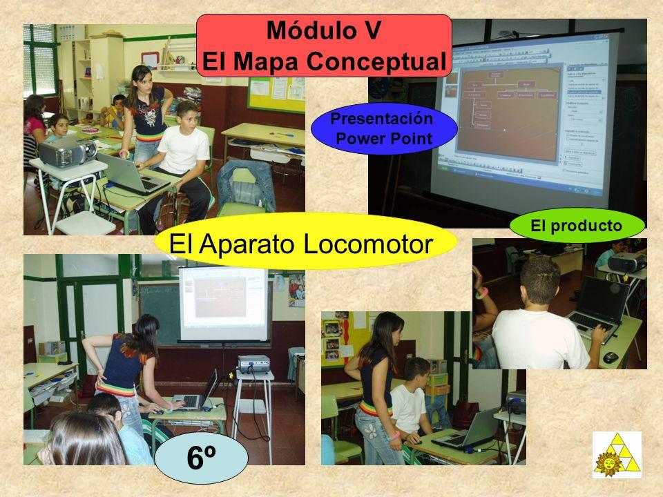 Módulo V El Mapa Conceptual Presentación Power Point 6º El producto El Aparato Locomotor