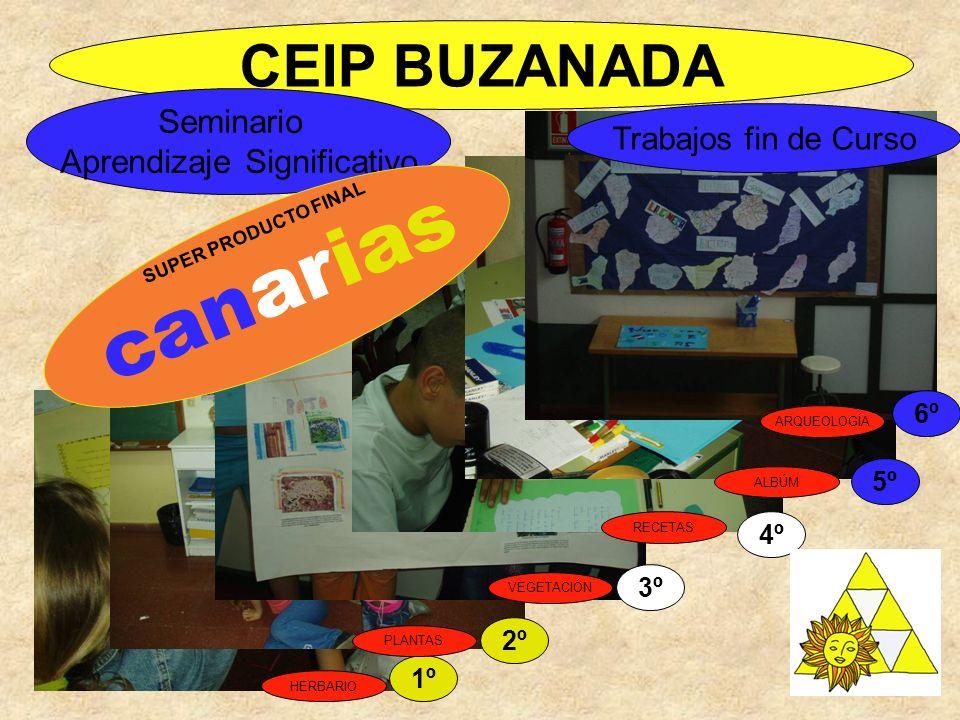 CEIP BUZANADA Seminario Aprendizaje Significativo Trabajos fin de Curso 1º 2º 3º 4º 5º 6º SUPER PRODUCTO FINAL canarias HERBARIO PLANTAS VEGETACIÓN RE