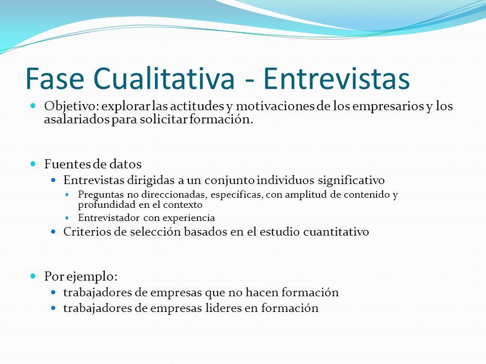 Fase Cualitativa - Entrevistas Objetivo: explorar las actitudes y motivaciones de los empresarios y los asalariados para solicitar formación. Fuentes
