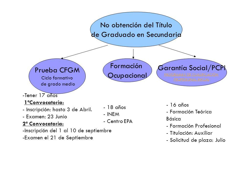 No obtención del Título de Graduado en Secundaria Prueba CFGM Ciclo formativo de grado medio Garantía Social/PCPI PROGRAMAS DE CUALIFICACIÓN PROFESIONAL INICIAL Formación Ocupacional -Tener 17 años 1ªConvocatoria: - Inscripción: hasta 3 de Abril.