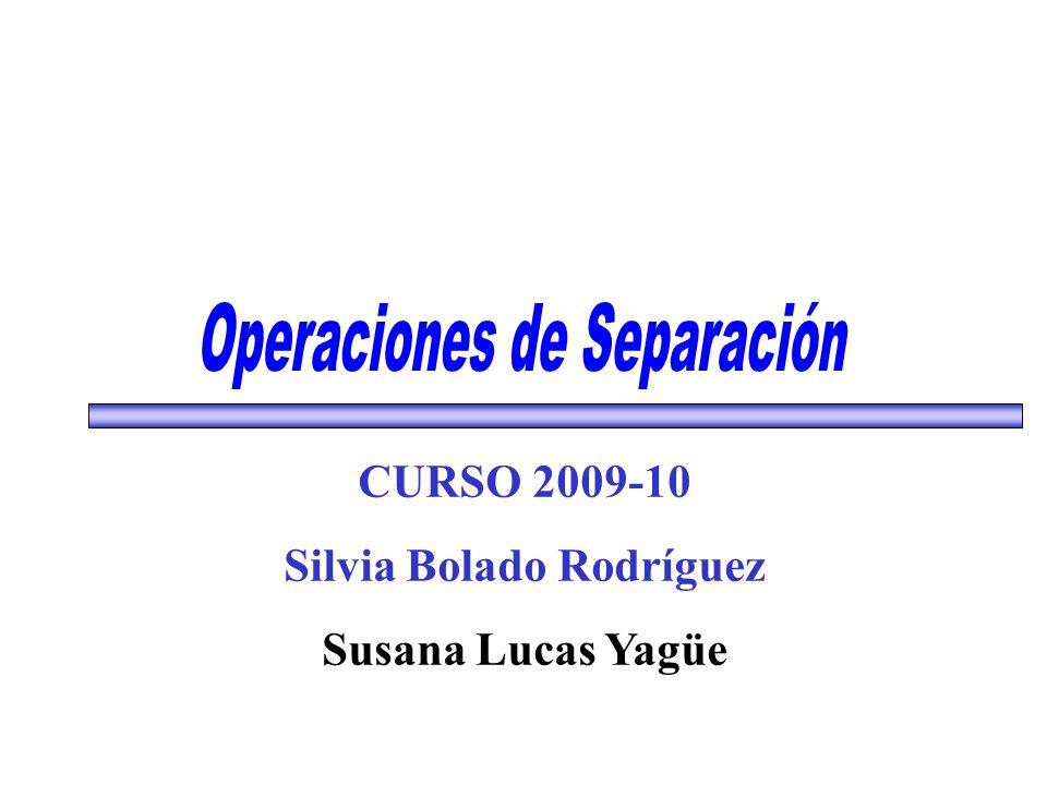 CURSO 2009-10 Silvia Bolado Rodríguez Susana Lucas Yagüe