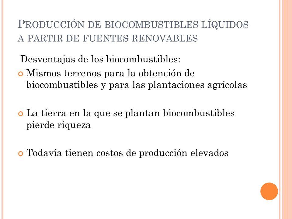 P RODUCCIÓN DE BIOCOMBUSTIBLES LÍQUIDOS A PARTIR DE FUENTES RENOVABLES Desventajas de los biocombustibles: Mismos terrenos para la obtención de biocom