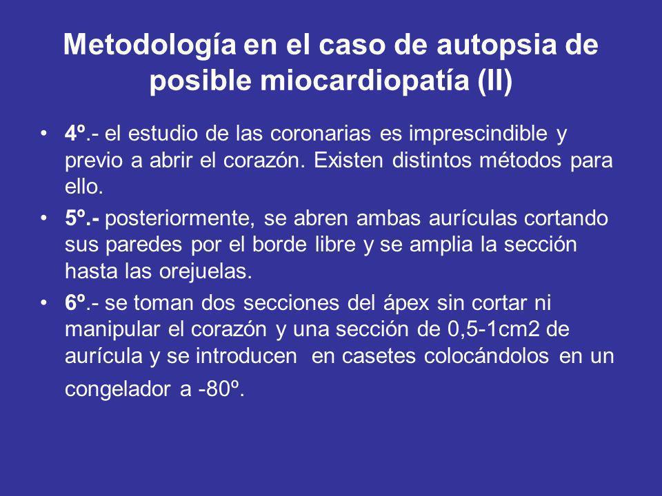 Metodología en el caso de autopsia de posible miocardiopatía (II) 4º.- el estudio de las coronarias es imprescindible y previo a abrir el corazón.