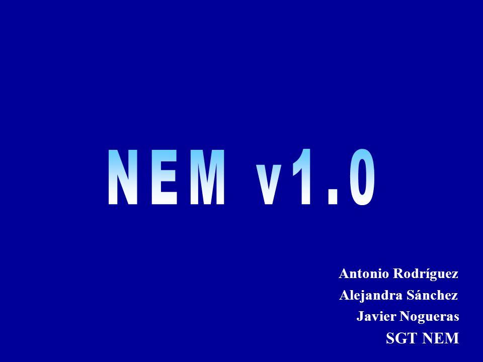 2005-02-10NEM2 NEM v1.0 El Grupo de Trabajo para la IDEE en su última reunión (Zaragoza 5/11/04) creó el SGT NEM (Subgrupo de Trabajo del Núcleo Español de Metadatos).