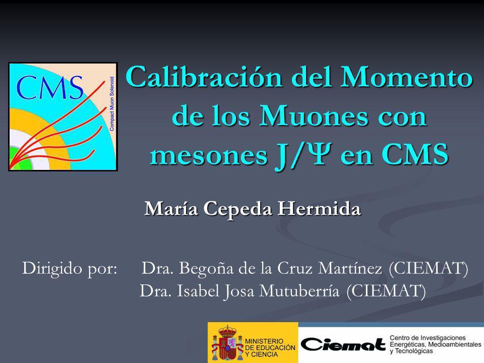 2 Outline LHC y CMS LHC y CMS El sistema detección de muones en CMS El sistema detección de muones en CMS Producción y Reconstrucción del J/ en CMS Producción y Reconstrucción del J/ en CMS Efectos que influyen en la masa reconstruida Efectos que influyen en la masa reconstruida Calibración del momento de los muones Calibración del momento de los muones Resolución de la medida del momento Resolución de la medida del momento Conclusiones Conclusiones