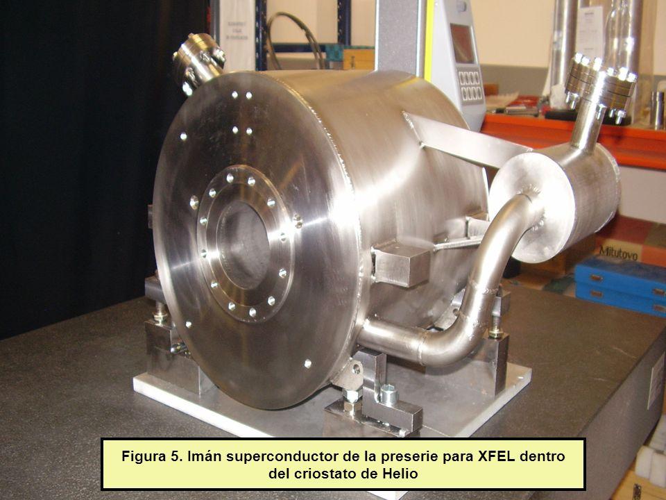 Figura 5. Imán superconductor de la preserie para XFEL dentro del criostato de Helio