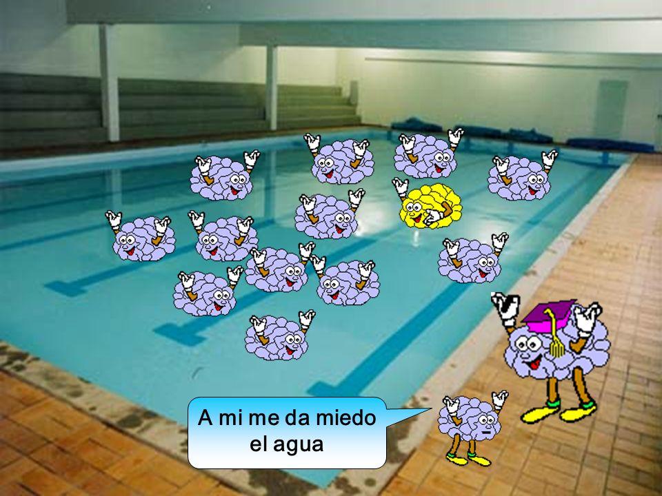 Venga, ¡todos al agua!.