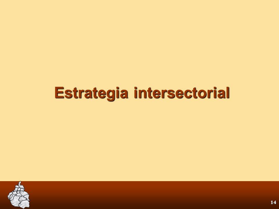 13 Las estrategias La estrategia intersectorial para: En el sector salud para: Mejorar la salud mejorar las concidiones de vida mejorar las concidione