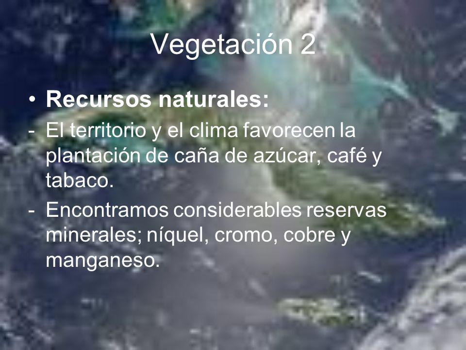 Vegetación 2 Recursos naturales: -El territorio y el clima favorecen la plantación de caña de azúcar, café y tabaco. -Encontramos considerables reserv
