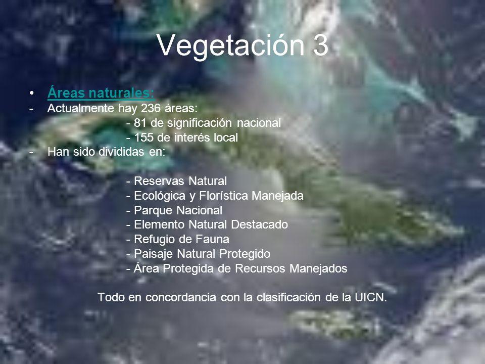 Vegetación 3 Áreas naturales: -Actualmente hay 236 áreas: - 81 de significación nacional - 155 de interés local -Han sido divididas en: - Reservas Nat