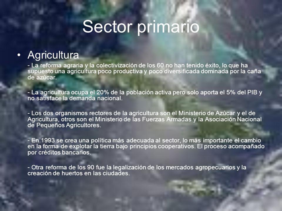 Sector primario Agricultura - La reforma agraria y la colectivización de los 60 no han tenido éxito, lo que ha supuesto una agricultura poco productiv
