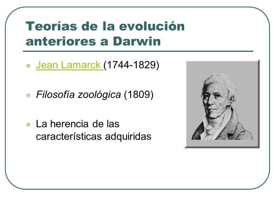 Teorías de la evolución anteriores a Darwin Jean Lamarck (1744-1829) Jean Lamarck Filosofía zoológica (1809) La herencia de las características adquir