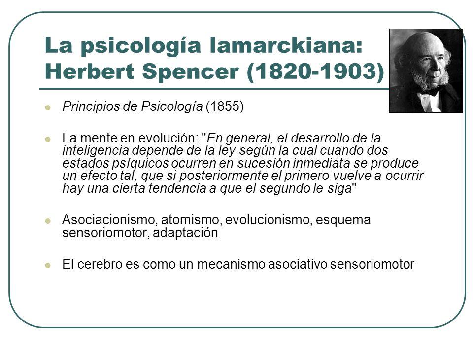 La psicología lamarckiana: Herbert Spencer (1820-1903) Principios de Psicología (1855) La mente en evolución: