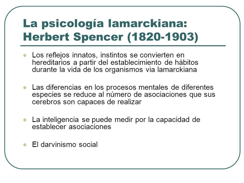 La psicología lamarckiana: Herbert Spencer (1820-1903) Los reflejos innatos, instintos se convierten en hereditarios a partir del establecimiento de h