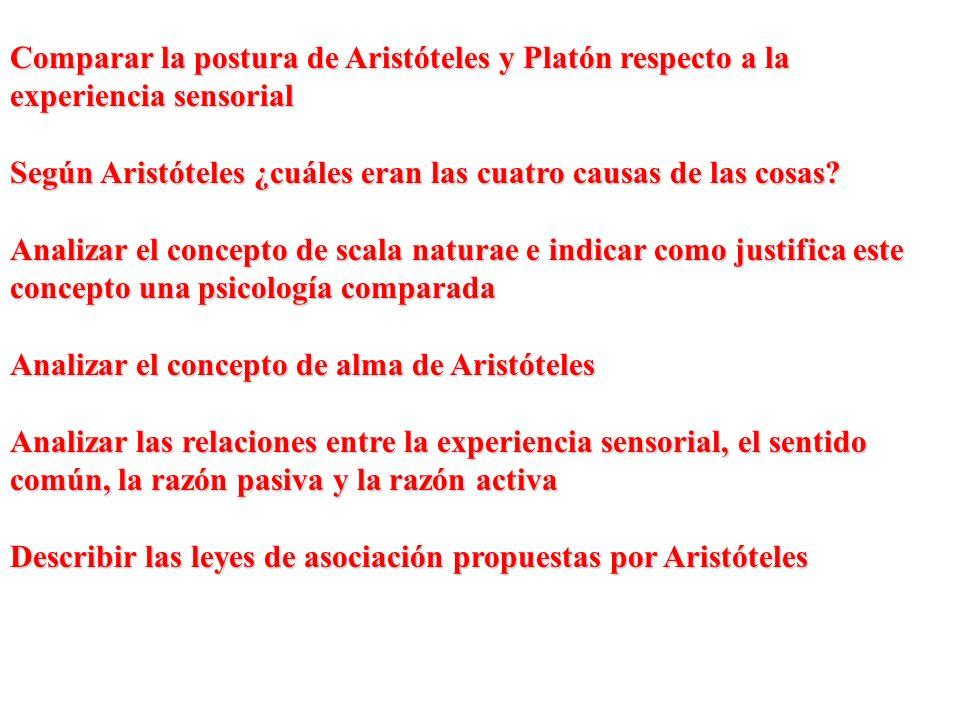 Comparar la postura de Aristóteles y Platón respecto a la experiencia sensorial Según Aristóteles ¿cuáles eran las cuatro causas de las cosas? Analiza