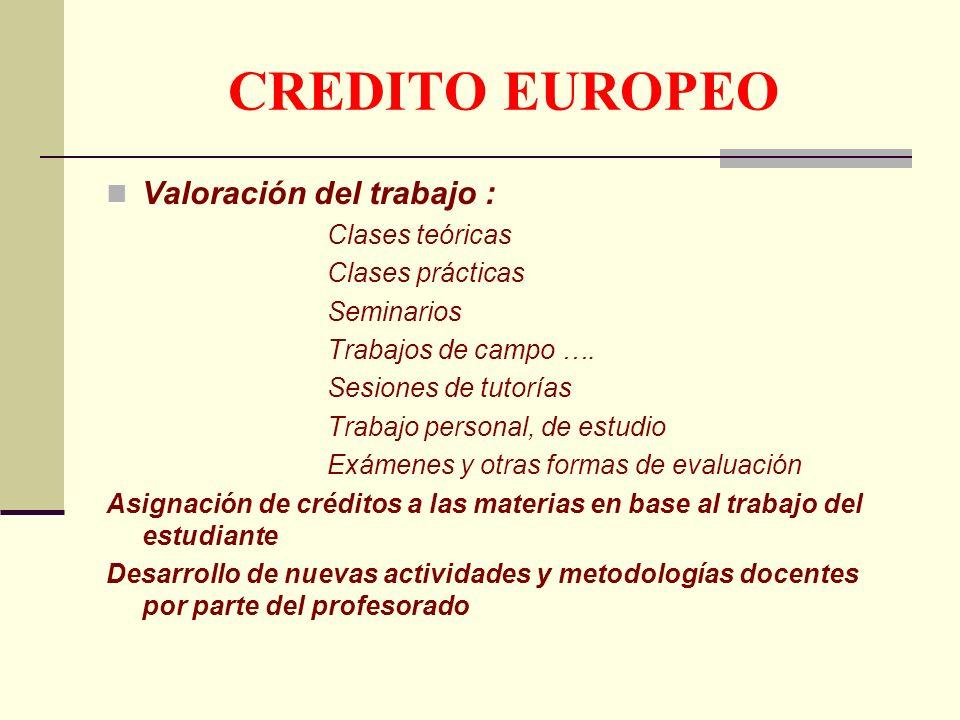 CREDITO EUROPEO Valoración del trabajo : Clases teóricas Clases prácticas Seminarios Trabajos de campo ….