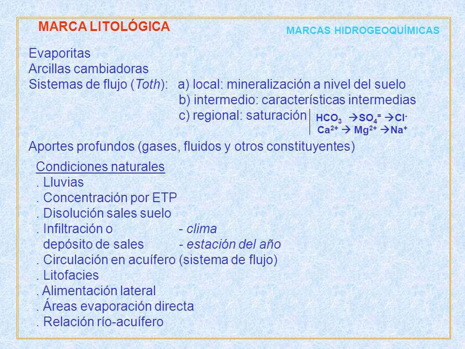 Evaporitas Arcillas cambiadoras Sistemas de flujo (Toth): a) local: mineralización a nivel del suelo b) intermedio: características intermedias c) reg
