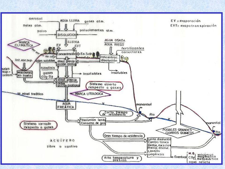 PROCESOS MODIFICADORES Salinidad del agua resultante de la mezcla (fuerza iónica) Litología del acuífero Factores hidrodinámicos Fases minerales presentes en la matriz Grado de saturación para estas fases u otras Parámetros físico-químicos (pH, Eh, temperatura) Presencia o no de materia orgánica Presencia de microorganismos (bacterias) Disponibilidad de gases en disolución (CO 2, O 2 ) Sinergia Factores que operan