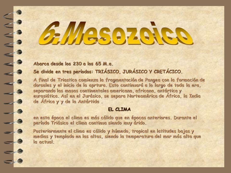 Abarca desde los 230 a los 65 M.a. Se divide en tres períodos: TRIÁSICO, JURÁSICO Y CRETÁCICO. A final de Triastico comienza la fragmentación de Pange