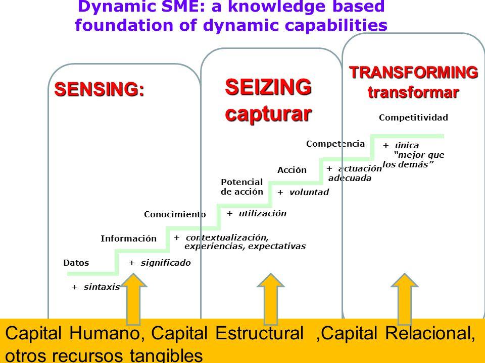 Dynamic SME: a knowledge based foundation of dynamic capabilities + única mejor que los demás Competitividad + sintaxis Datos+ significado Información