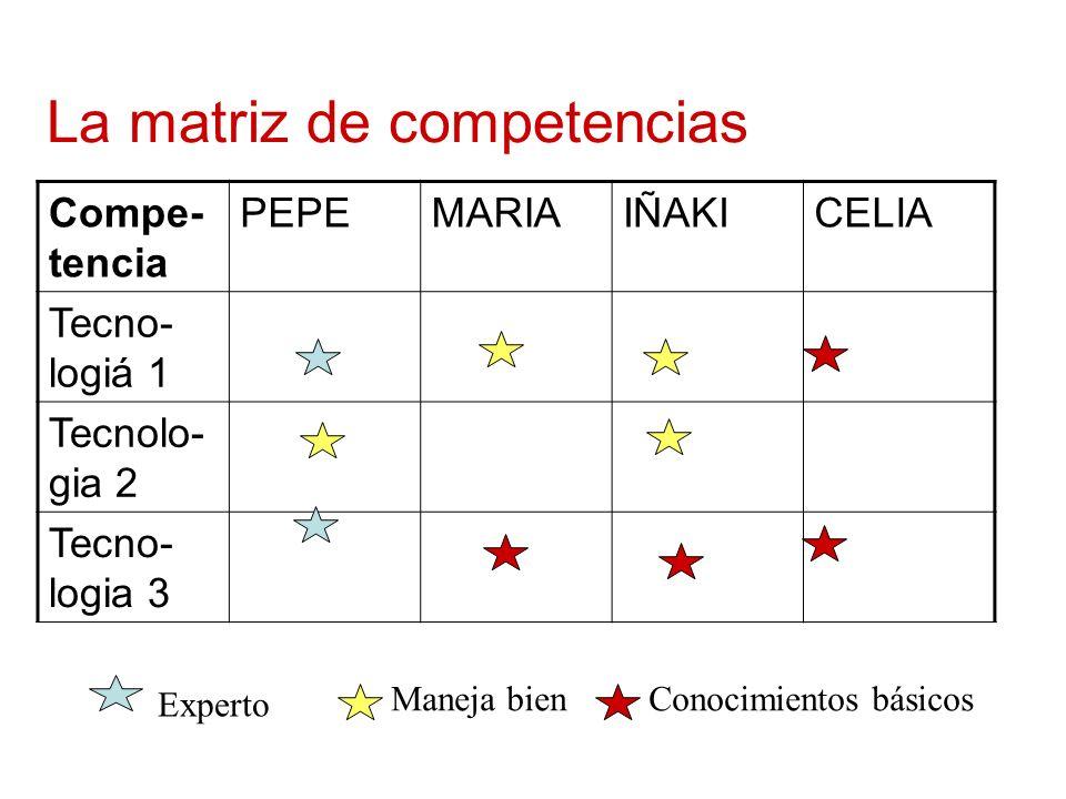 La matriz de competencias Compe- tencia PEPEMARIAIÑAKICELIA Tecno- logiá 1 Tecnolo- gia 2 Tecno- logia 3 Experto Conocimientos básicosManeja bien