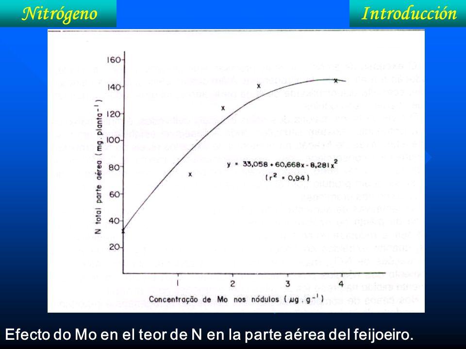 IntroducciónNitrógeno Efecto do Mo en el teor de N en la parte aérea del feijoeiro.