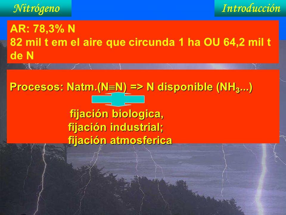 Procesos: Natm.(N N) => N disponible (NH 3...) fijación biologica, fijación industrial; fijación atmosferica Nitrógeno AR: 78,3% N 82 mil t em el aire