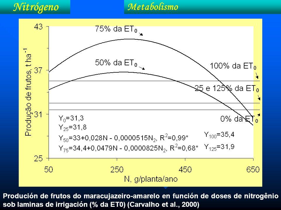 Nitrógeno Metabolismo Produción de frutos do maracujazeiro-amarelo en función de doses de nitrogênio sob laminas de irrigación (% da ET0) (Carvalho et