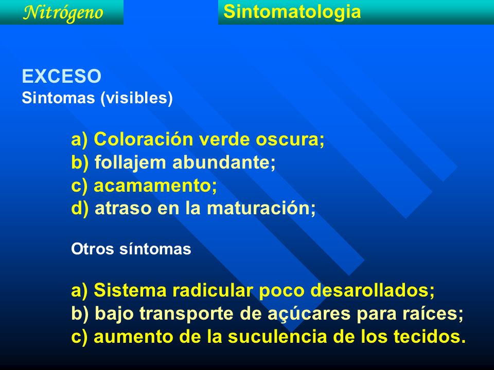 Nitrógeno Sintomatologia EXCESO Sintomas (visibles) a) Coloración verde oscura; b) follajem abundante; c) acamamento; d) atraso en la maturación; Otro