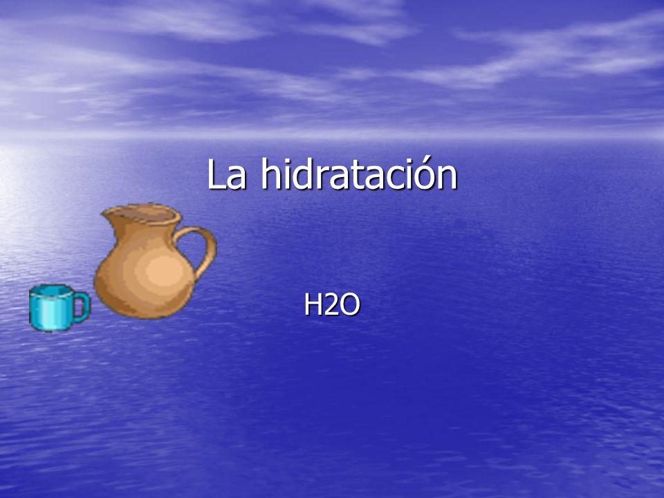 Importancia de la hidratación en el funcionamiento del organismo.
