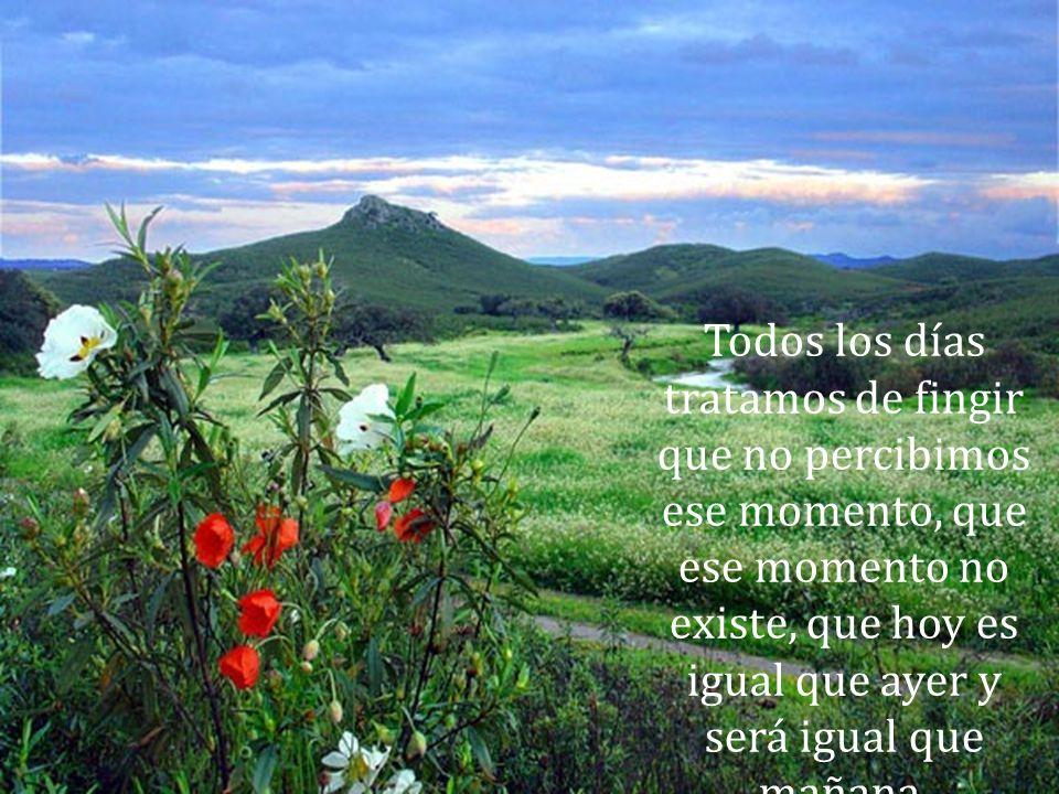 Todos los días Dios nos da, junto con el Sol, un momento en el que es posible cambiar todo lo que nos hizo infelices .