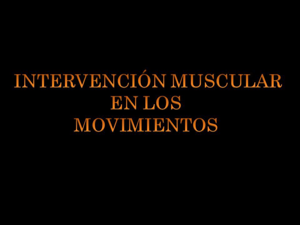 TIPOS DE CONTRACCIÓN MUSCULAR ISOMÉTRICA.